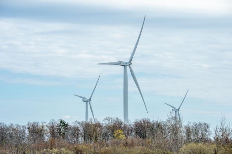 Kaitseministeerium piiras Saaremaal tuuleparkide planeerimist