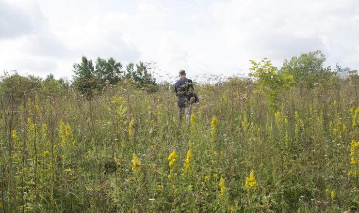 Mustakivi tee rajamiseks tehakse ulatuslikke uuringuid