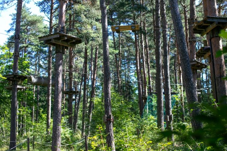 Nädala pärast toimuv metsameeleavaldus paisus üle-eestiliseks