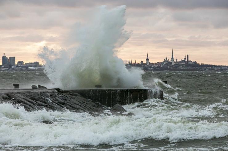 INIMENE JÄI PUU ALLA! Päästeamet on tormi tõttu saanud üle 260 väljakutse