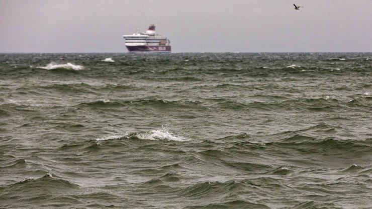 Estonia huku uurimiskomisjoni liige ei usu kokkupõrget laevaga