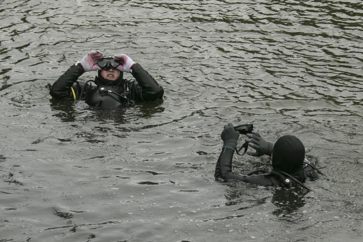 Helme: Eestil puudub tuukrivõimekus Estoniale sukeldumiseks