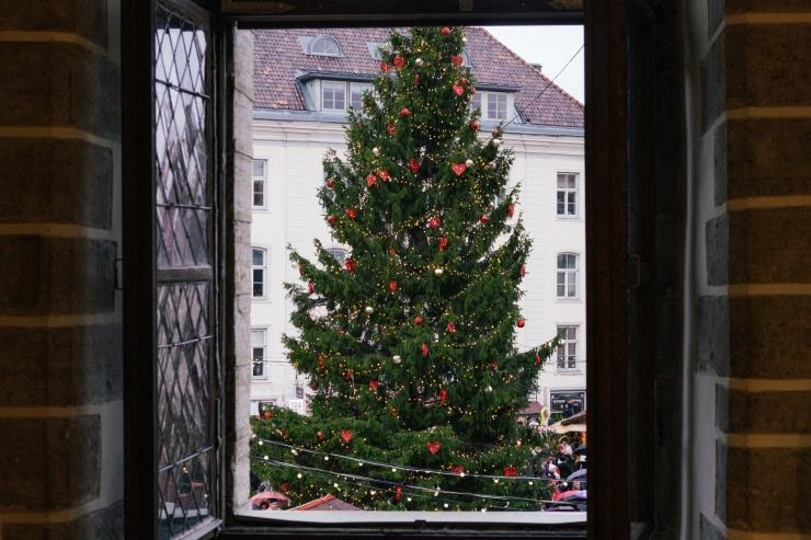 AITA LEIDA ILUSAIM! Raekoja platsile otsitakse ilusaimat jõulupuud